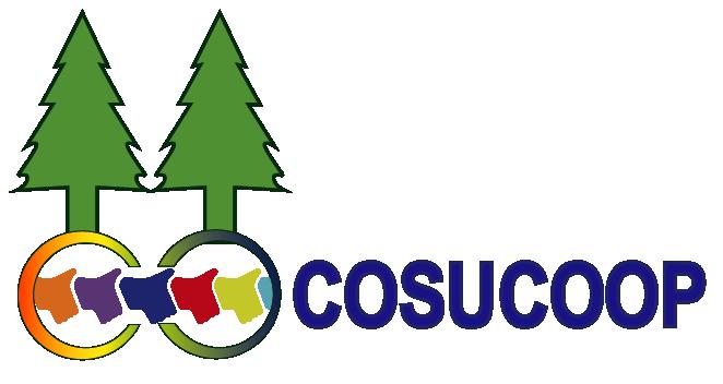 Consejo Superior del Cooperativismo